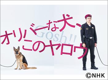 2021年夏ドラマガイド/オリバーな犬、(Gosh!!)このヤロウ
